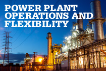 Power Plant Operations and Flexibility